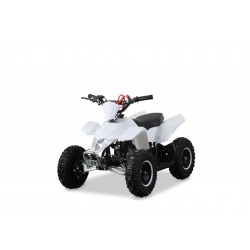 Pocket Quad 49cc LTR Blanc